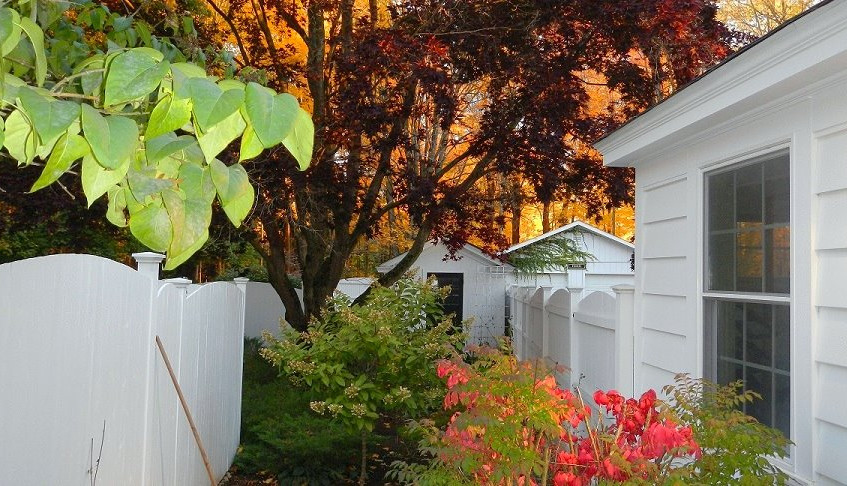 Fall foliage at Country House