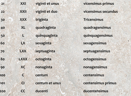 What the Romans called their numbers