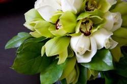wedding-bouquet-orchids-6131107