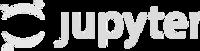 Jupyter notebook logo faded
