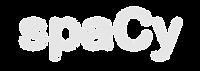spacy logo faded