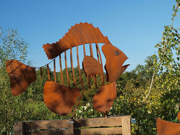 fish sunfishnew.jpg
