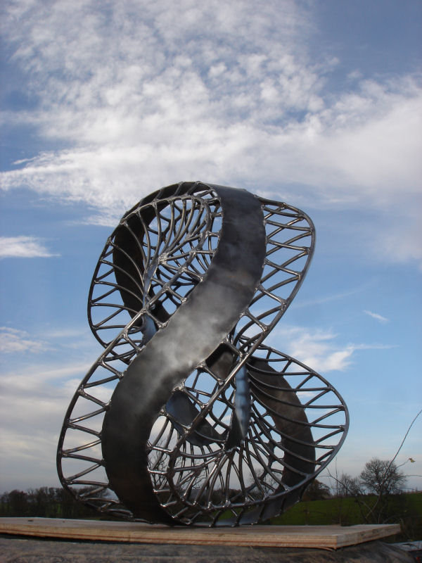 saddle diatom.jpg