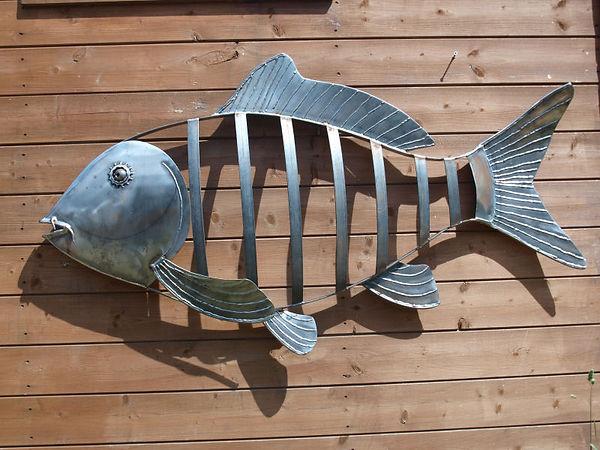fish carp 002.JPG