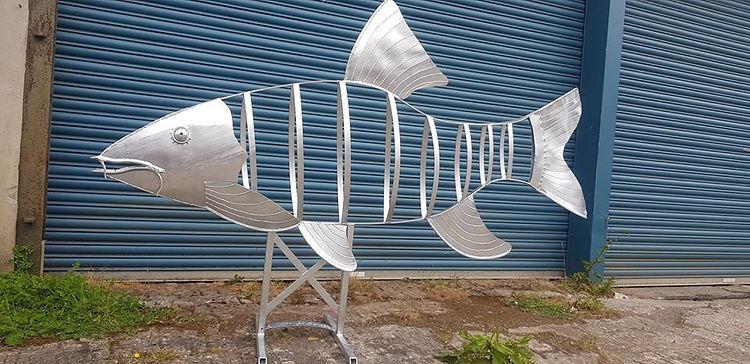 fish Barbel.jpg