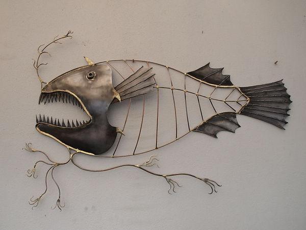 fish Calophryne pennibarbata.JPG