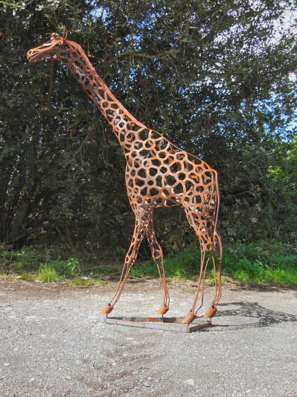 giraffe rusty1 002.JPG