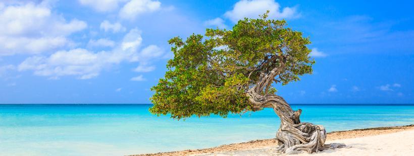Aruba | Bucket List Vacations