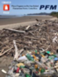 cleanupOrganos13MAR19RedLogoSylfaen.png