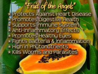 Papaya, is a tropical fruit you must have in your diet. It will help you to manage many health probl