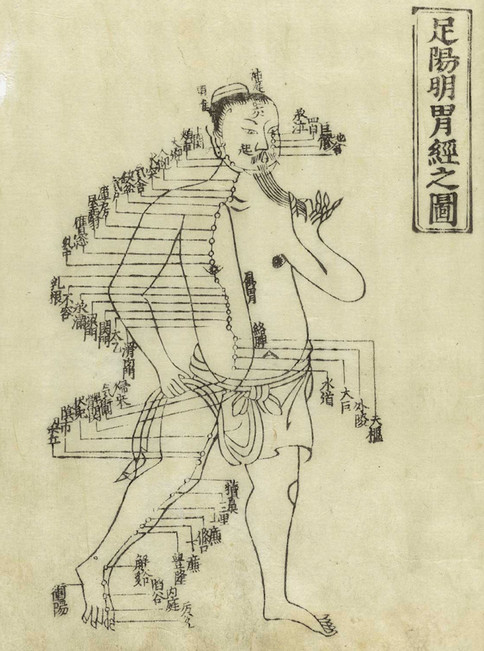 Meridians from Hua Shou's Jushikei hakki