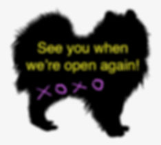 44-440927_pomeranian-silhouette-at-getdr