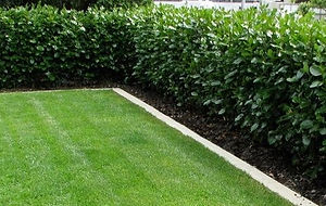Maximize space in landscape, cost-effective