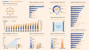 HANDELSBLATT Infografik Design