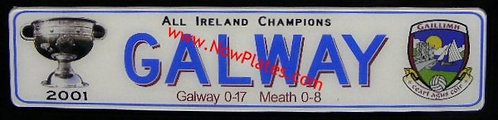 Souvenir Gaelic Football Plate with your County Name x 1 only