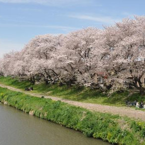 3月10日は福岡県公立高校入試