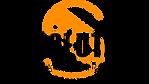 Logo AFS N.png
