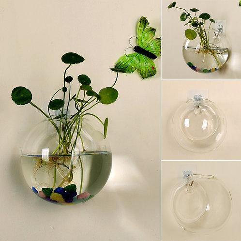 Transparent Glass Hanging Wall Vase