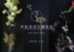 頒布会広告.jpg