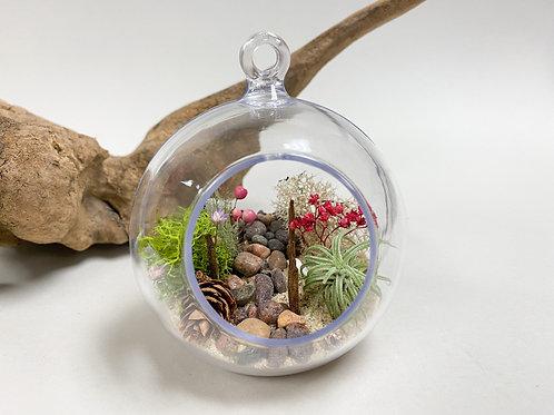 Design 27 - Beach and Forest Theme (Plastic) Terrarium Kit for Kids