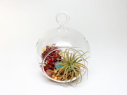 Design 6 - Small-Size Orb Brown Pebble Desert Oasis Theme Terrarium Kit