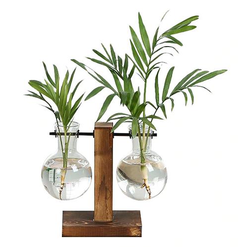 Set of 2 Propagation Bud Glass Vases - Plant Starter Kit