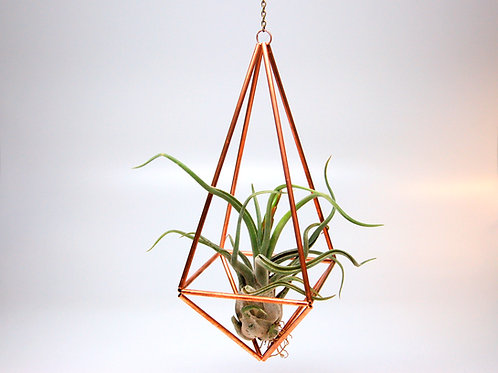 Design 25 - Large Hanging Copper Prism Geometric Ornament (Himmeli) w Air Plant