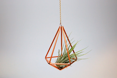 Design 7 - Hanging Copper Prism Geometric Ornament (Himmeli) with Air Plant
