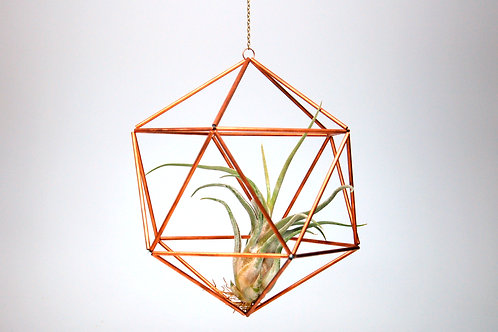 Design 18 - Large Hanging Copper Geometric Ornament (Himmeli) with Air Plant