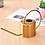 Thumbnail: Brass Style Stainless Steel Watering Can