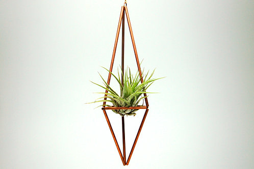Design 1 - Hanging Copper Geometric Ornament (Himmeli) with Air Plant