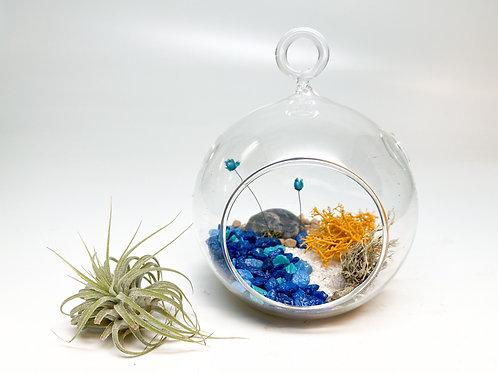 Design 4 - Small-Size Orb White Sand Beach Theme Terrarium Kit