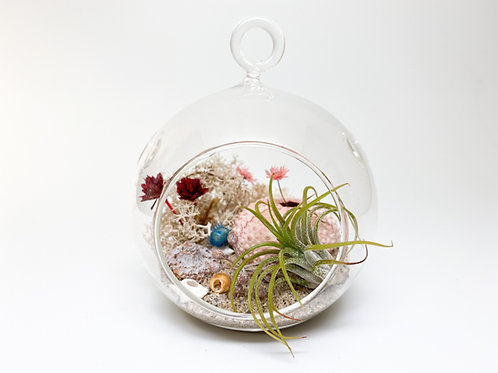 Design 1 - Small-Size Orb Beach Theme Terrarium Kit
