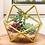 "Thumbnail: 4.5"" Wide Gold Geometric Glass Terrarium"