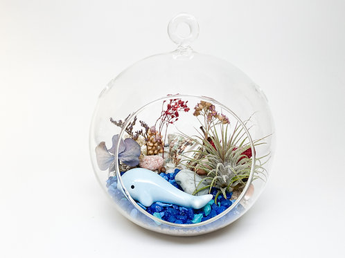 Design 26 - Large-Size Ocean Whale Beach Floral Theme Terrarium Kit
