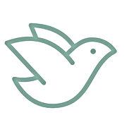 logo-PVR.jpg