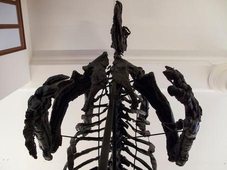 Hug a dinosaur