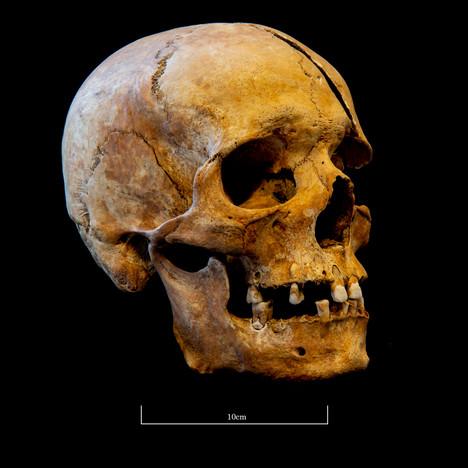 Skull 5723SJ - 7053.jpg
