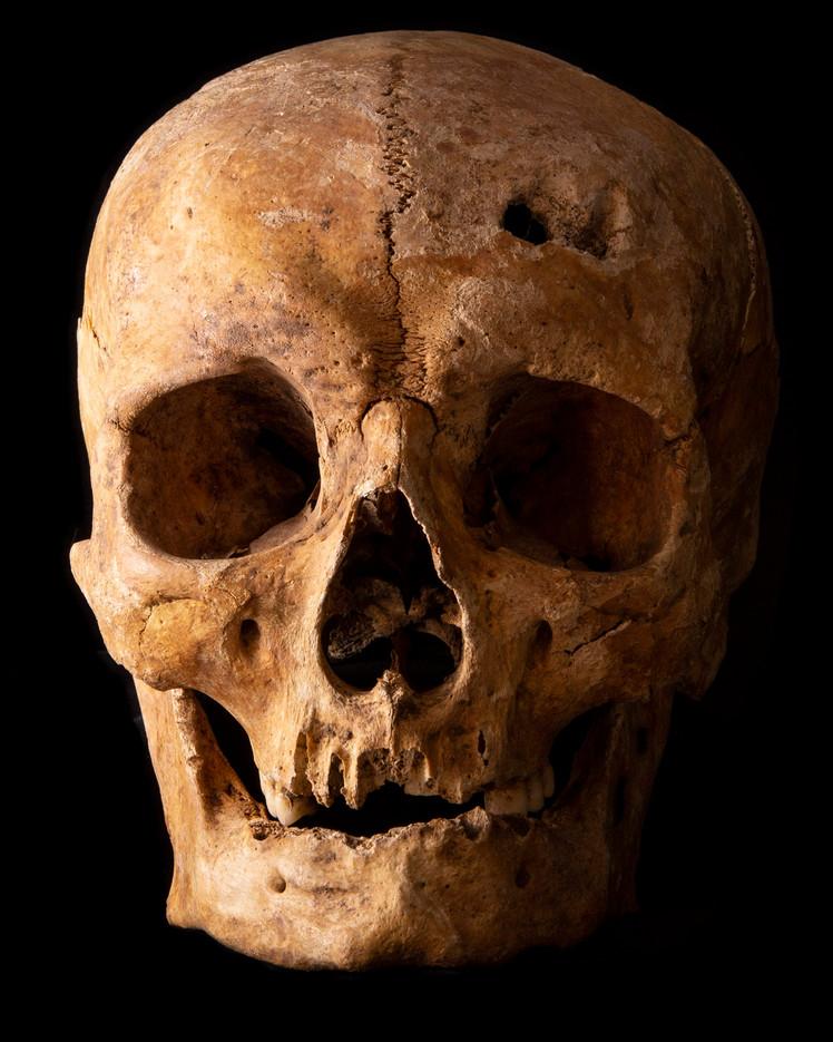 C12-16 Male skull 2004SEJ front.jpg