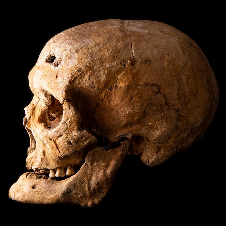 C12-16 Male skull 2004SEJ side.jpg