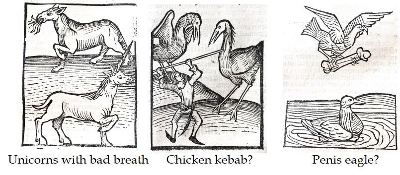 Unicorn, chicken kebab and penis eagle