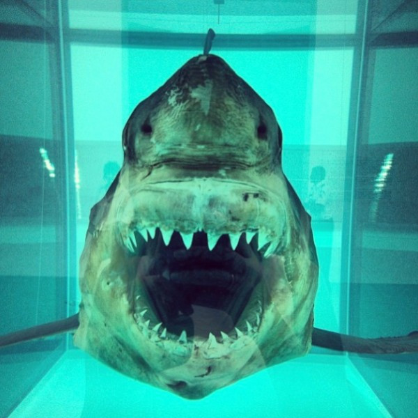 "Damien Hirst, (shark"" 1991, (second edition after the first rotted), photographed by Corinne Martin, 2013"