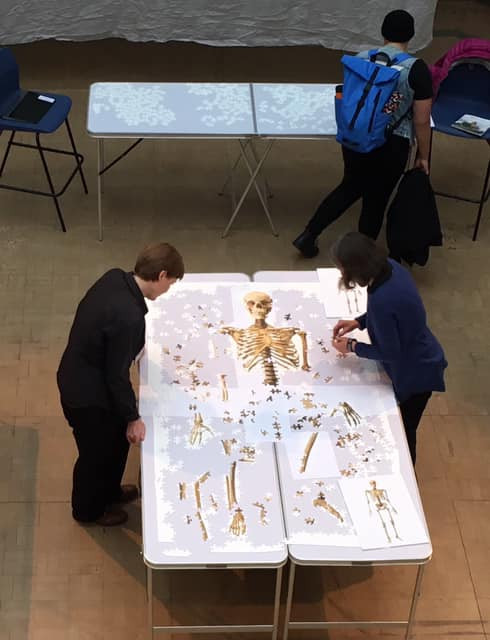 People working on the skeleton jigsaw at the SPILL festival