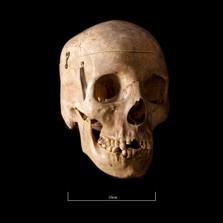 Skull FR30 - 9144.jpg