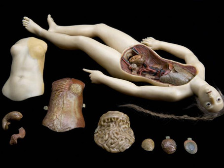 Wellcome to Morbid Anatomy