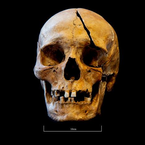 Skull 5723SJ - 7041.jpg