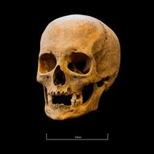 Skull A044EH - 6295.jpg