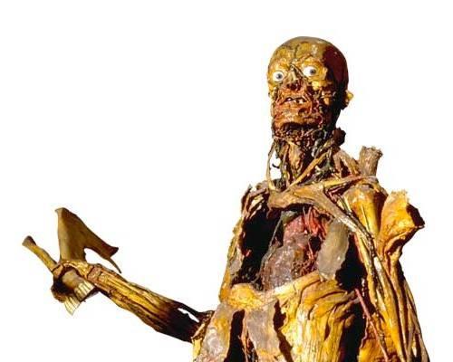 Man with mandible at Fragonard Musee