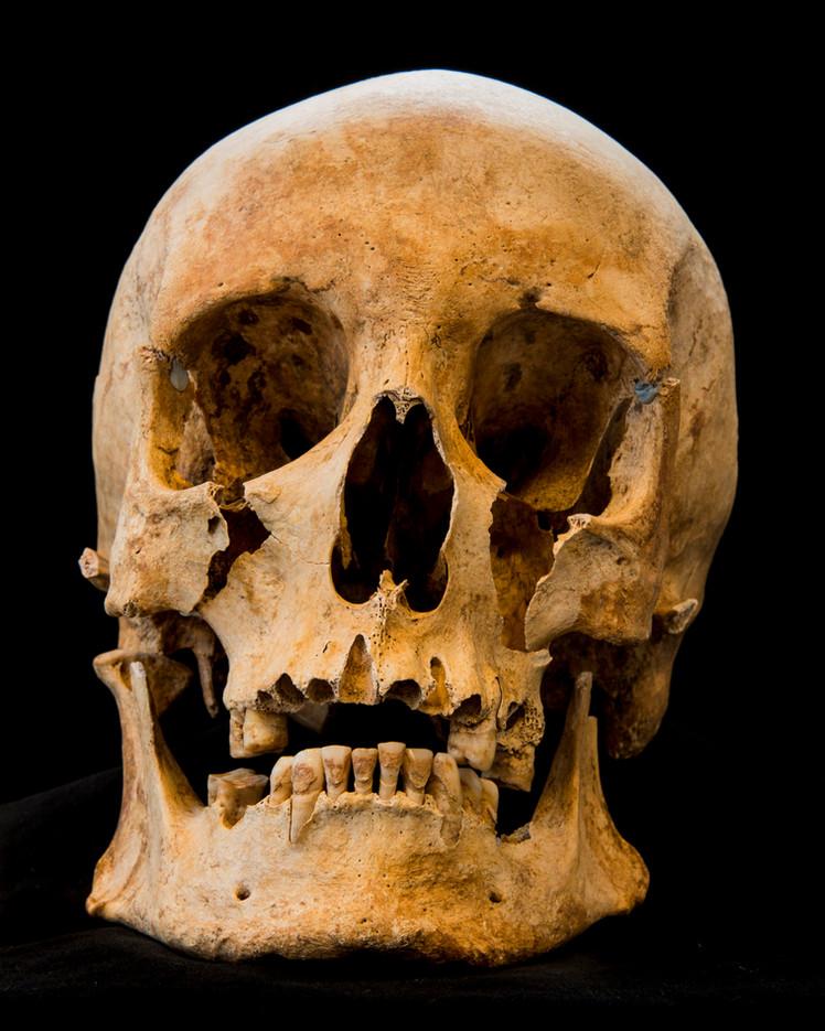 C12-16 Male skull 653SJ front.jpg