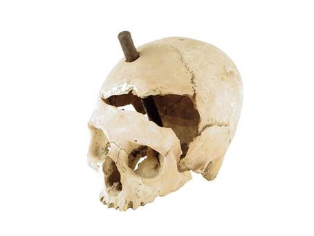 Witch skull with iron stake for sale